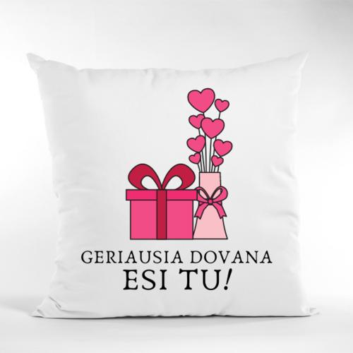 Dekoratyvinė pagalvė geriausia dovana esi tu